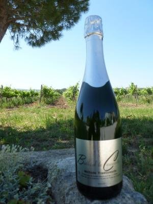 White Sparkling Wine (Brut)